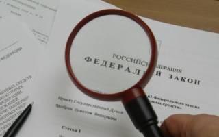 В России могут разрешить приобретать авто на маткапитал